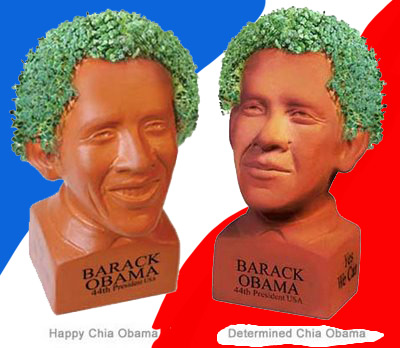 chia-obama-2