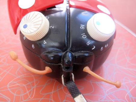 ladybug-transistor-radio__3558