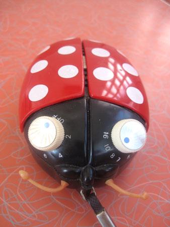 ladybug-transistor-radio__3561
