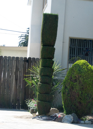 tree_3648